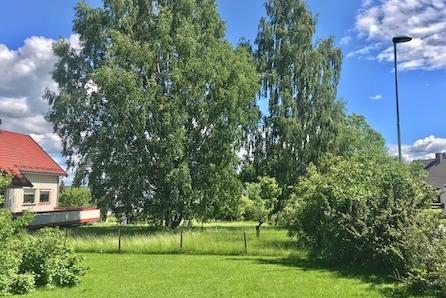 Tomt for salg på Smeby i Hamar kommune