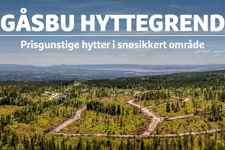 Gåsbu hyttegrend -Prisgunstige og solrike selveiertomter i snøsikkert område, 1,5 t fra Oslo - Priser fra kr 400 000,-.