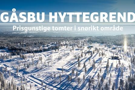 VISNING 08.03 KL 14.00-15.00-Gåsbu hyttegrend-Prisgunstige og solrike selveiertomter i snøsikkert område, 1,5 t fra Oslo