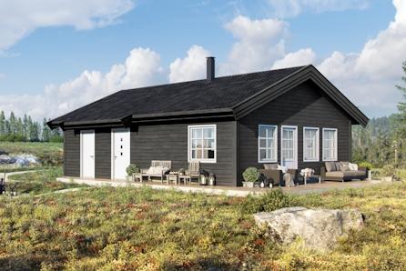 TOMTEVISNING ONSD. 07.10 KL 17-18, Romslig hytte inkl selveietomt på Gåsbu med flott turterreng