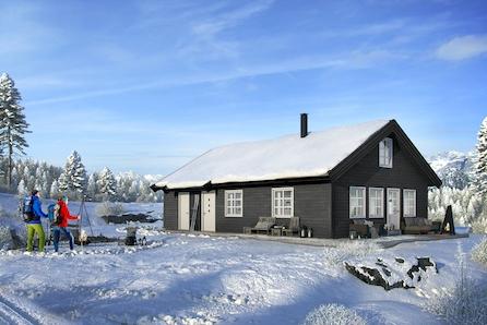 TOMTEVISNING LØRD. 13.03 KL 14-15, Romslig hytte inkl selveietomt på Gåsbu med flott turterreng