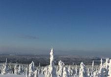 Vinter Bilde Utsikt Fra Stenfjellet