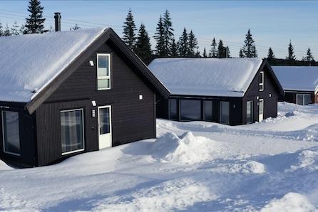 TOMTEVISNING SØNDAG 11.04 KL 14-15. Snøsikre Gåsbu hyttegrend - fantastisk turterreng, 1,5 time fra Oslo