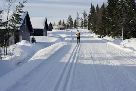 Snøsikre Gåsbu hyttegrend - Oppfyll hyttedrømmen med ski inn/out langrenn. NÅ INKL SKIPAKKE MED VERDI KR 50 000,-.