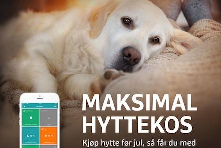 KAMPANJE* - GÅSBU - flott familiehytte med 3 soverom og romslig hems