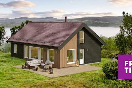 Birkenhytta Storåsen rommer 4 sov og hems på 43m2. Ski in/out. Nøkkelferdig på stor, solrik tomt på Nordseter