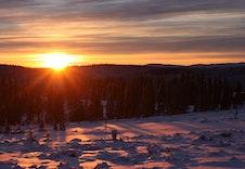 Solnedgang i januar. Flott lys!
