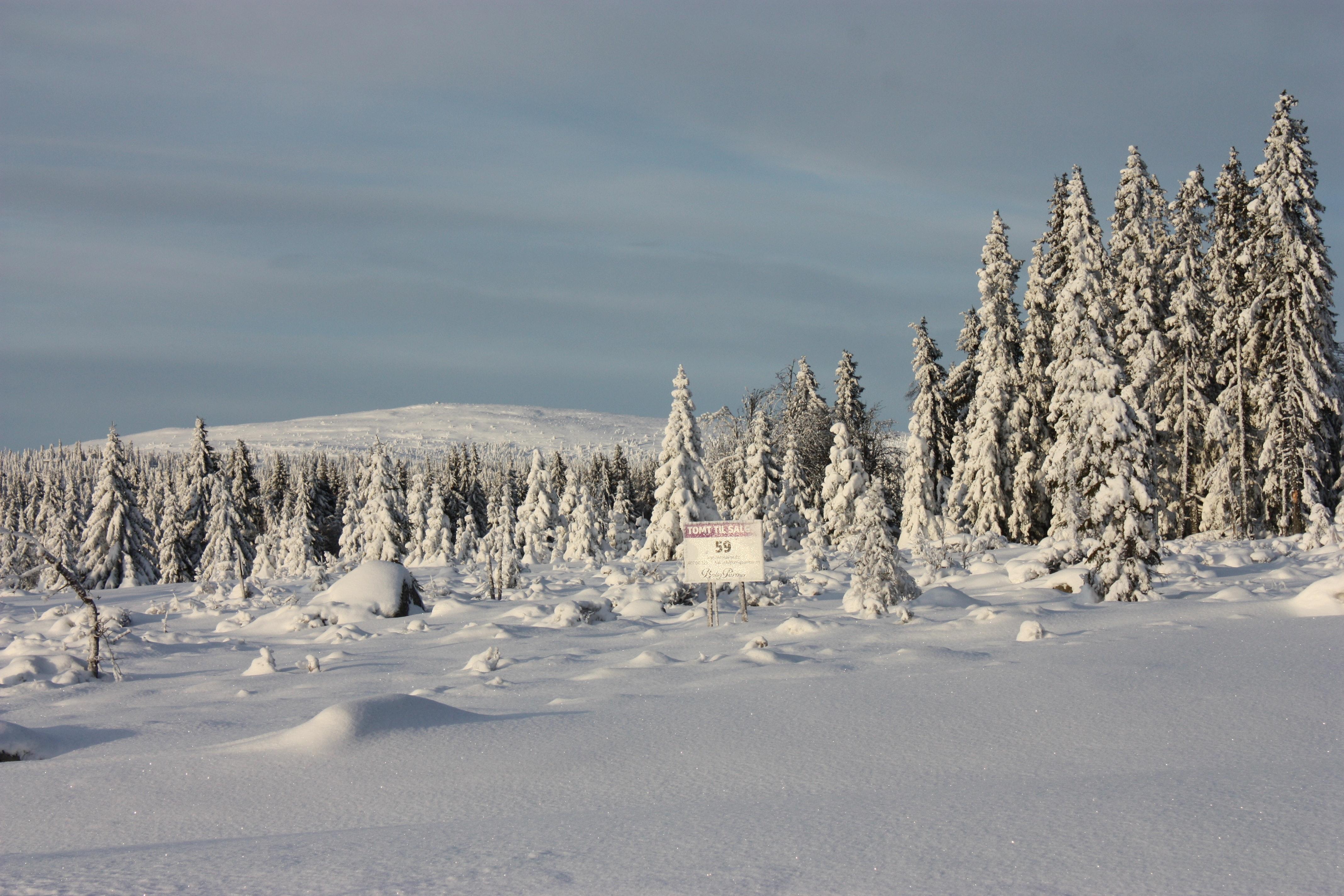 VISNINGSKAMPANJE! Solrike, store selveiertomter! Flott utsikt, kort vei til Lillehammer og Sjusjøen. Langrennski in/out