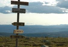 Birkebeinerløpet går over fjellet!