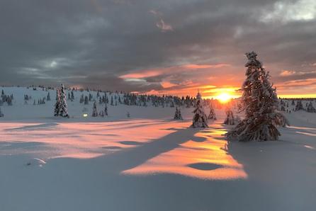 KUN 2 TOMTER IGJEN!  Store solrike selveiertomter! Ski in/out langrenn.