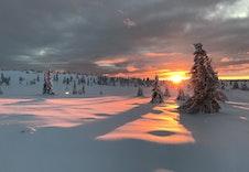 Desemberlyset på Nordseter er magisk!