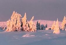 På vei innover løypene på Nordseter mot Reina en sen desemberdag