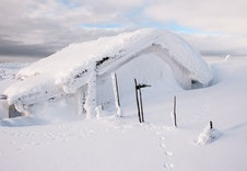 Snørikt område. Foto: Jon Gunnar Henriksen