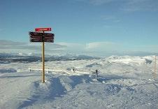 Fra toppen av alpinanlegget med utsikt mot Jotunheimen.