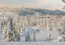 Vinter på Skei