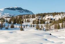 Fra Sørskei-tjernet hytteområde (foto Jon Henriksen)