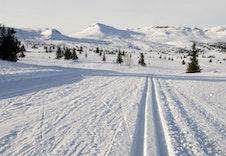 Langrennsløypene på Skeikampen er en av Norges beste!