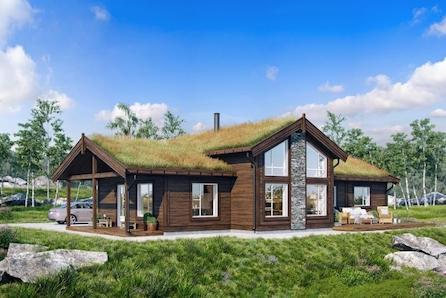 KLEVMOSETERHØGDA  - Stor hytte, 3/4 sov, 10 sengeplasser, Gode solforhold og  umiddelbar nærhet til skiløype.