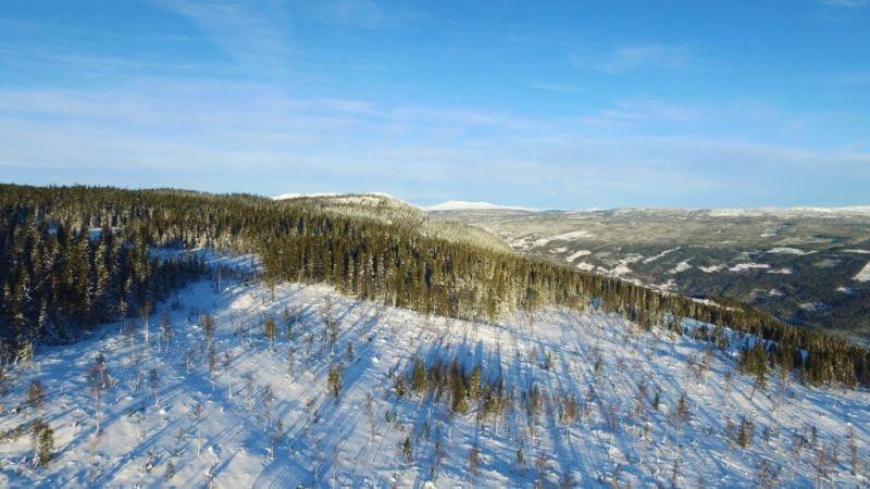 Skagahøgdi/Gol - Hyttetomter på toppen av Gol Skipark, tilrettelagt for alpint og langrenn, nært Gol sentrum