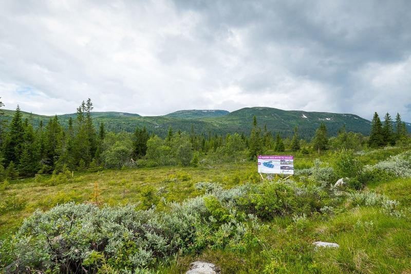 Veggli/Rustvegen Vest - 10 tomter med panoramautsikt mot Hardangervidda. Tomt 3 solgt.