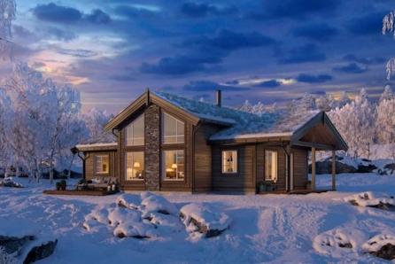 Vegglifjell Lauvhovdnuten - Innholdsrik hytte med mønt himling i stue. 3 soverom, 2 boder og hems.