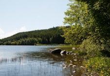 Flott natur langs Frøylandsvatnet