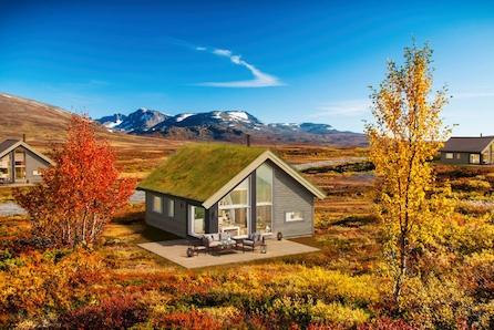 Kvamskogen- Prisgunstig hytte med hems! Sentral beliggenhet. Sommer og vinter parkering rett ved tomten.