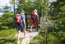 Løiten Almenning har turkart som viser alle de mange stiene og turene i området.