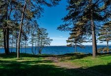 I området rundt Larkollen camping finnes en rekke aktivitetsmuligheter både til lands og til vanns.