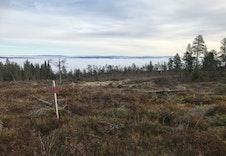 Tuntomt 239, utsikt over bygda. Vikerfjell ligger over tåka.