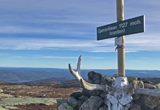 Høyeste toppen på Vikerfjell. Oslos nærmeste høyfjell.