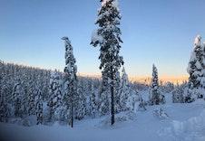Snøsikkert og vakkert en novemberdag