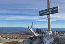 Vakre turmuligheter på nærmeste høyfjell - Vikerfjell, kun 30 minutter med bil.