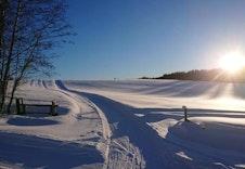 På vinteren kjøres det skispor på jordene rundt Hallingby. De har også flott lysløype som starter på Møltmyra stadion.