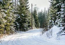 Fine ski løyper rett i nærheten til boligfeltet