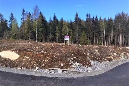 Nannestad/Ramstadåsen: Stor og fin byggeklar tomt - Kjøp innen 31/3 og få med downlightspakke verdi kr. 57000,-