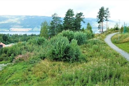 Lillehammer - Romslig boligtomt med flott utsikt og god solgang!