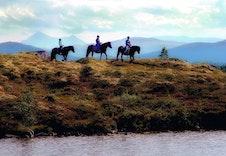 Grunneier tilbyr rideturer og andre opplevelser i forbindelse med Islandshester