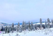 Utsikt fra tomta mot nord-vest