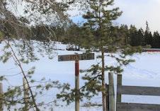 Stien opp til turmålet Sten ligger rett ved Spurvtrøa