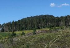 Sten, et populært turmål  i nærområdet