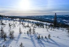 Fra tomteområdet mot sør (foto Joakim Mangen)