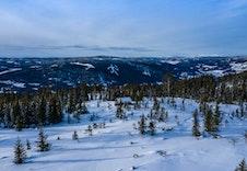 Fra tomteområdet mot nordvest (foto Joakim Mangen)