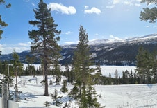 Espedalen Fjellgrend vinter