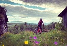 Mange Sykkelmuligheter Pa Stolsveger