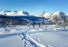 Grindafjell Vang Valdres