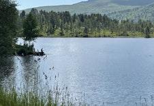 Godt fiskevatn