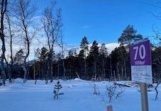 Vinter 10
