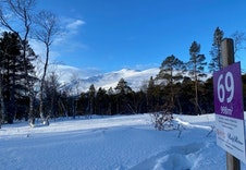 Vinter 11