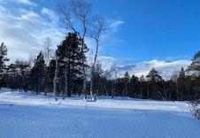Vinter 12